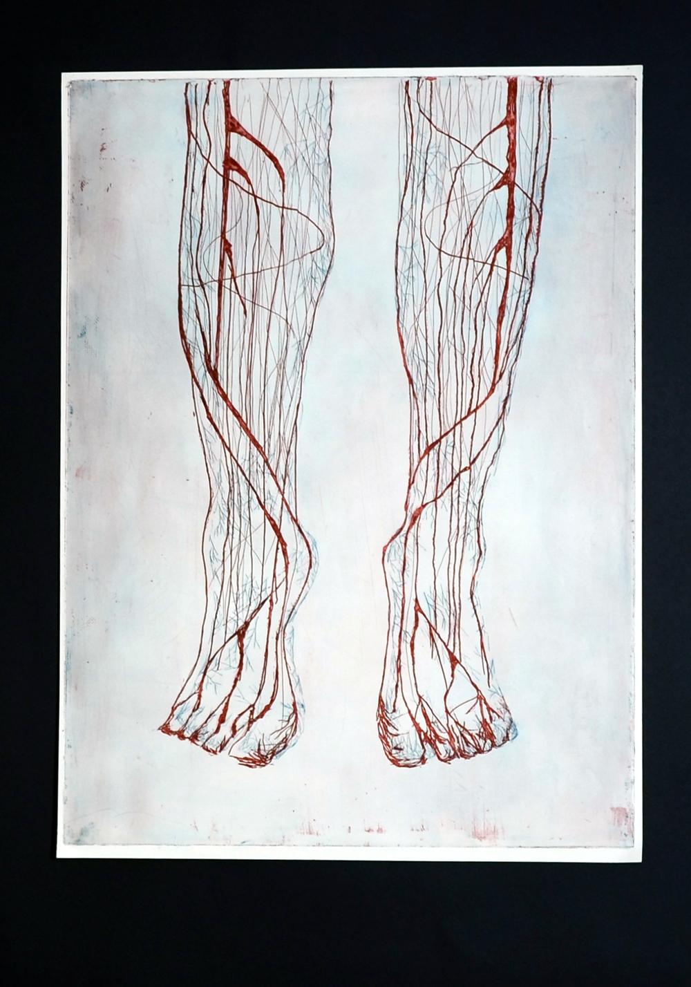 naczynia krwionosne